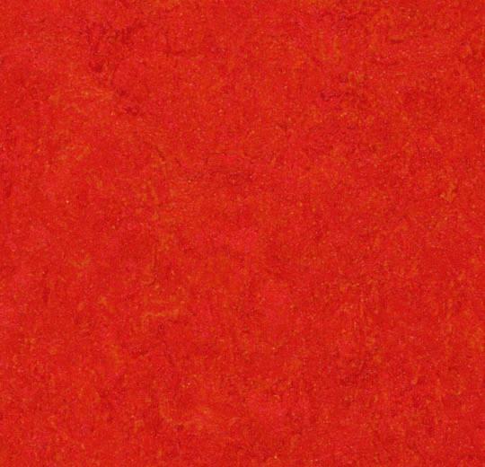 10659 3131 - Marmoleum Real