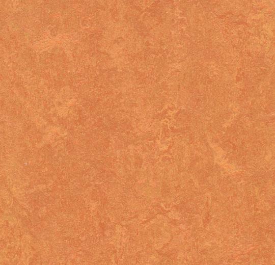 10713 3825 - Marmoleum Fresco