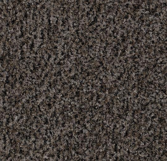 148343 5714 - Coral Brush