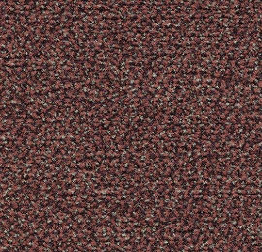 181673 4759 - Coral Classic