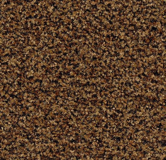 181690 5716 - Coral Brush