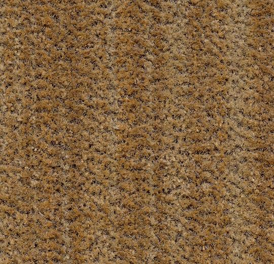 181736 5754 - Coral Brush