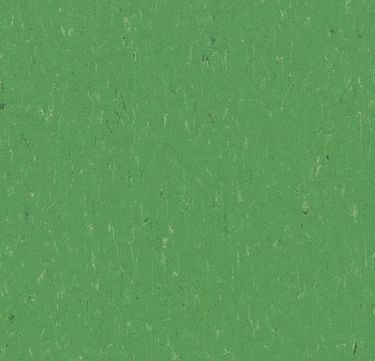 184743 3647 - Marmoleum Piano