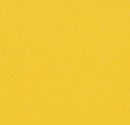 184744 3648 - Marmoleum Piano